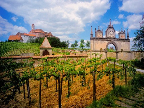 Ngắm vẻ quyến rũ 12 vùng sản xuất rượu vang trứ danh của Pháp - anh 23