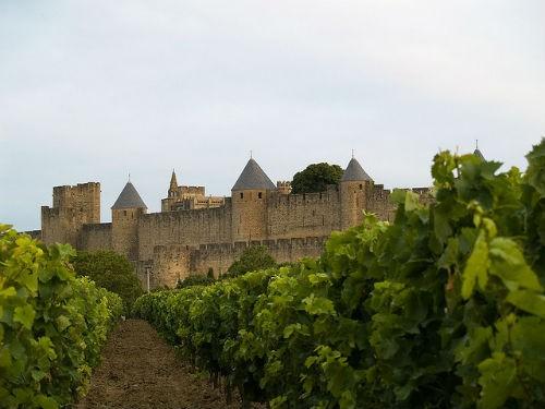 Ngắm vẻ quyến rũ 12 vùng sản xuất rượu vang trứ danh của Pháp - anh 9