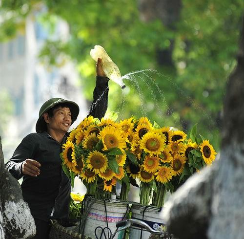 Hà Nội lọt top 13 thành phố lý tưởng nhất thế giới để làm việc từ xa - anh 2