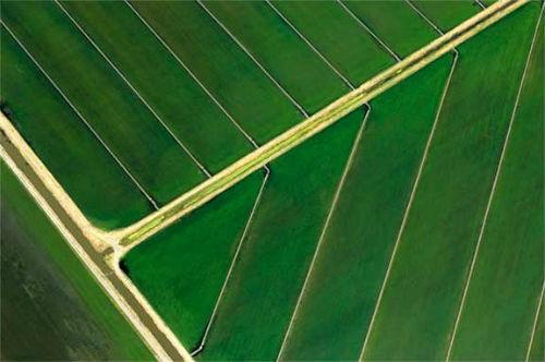 Vẻ đẹp ngút ngàn của các cánh đồng lúa trên toàn thế giới - anh 25