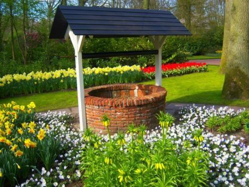 Ngắm thiên đường hoa Tulip độ xuân thì ở xứ sở Hà Lan - anh 22