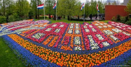Ngắm thiên đường hoa Tulip độ xuân thì ở xứ sở Hà Lan - anh 26