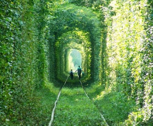 Lạc bước trong những con đường tình yêu đẹp nhất thế giới - anh 16