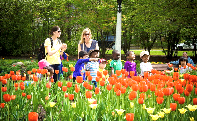 Những lễ hội mùa xuân rực rỡ trên thế giới - anh 7