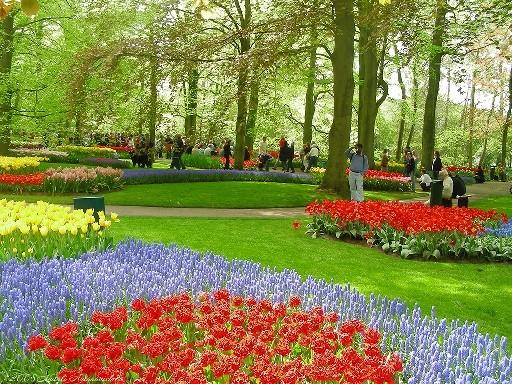 Những lễ hội mùa xuân rực rỡ trên thế giới - anh 8