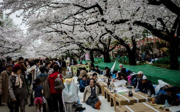 Những lễ hội mùa xuân rực rỡ trên thế giới - anh 6