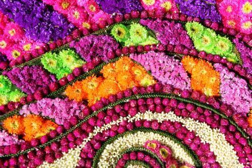 Những lễ hội mùa xuân rực rỡ trên thế giới - anh 4