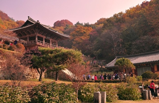 Vẻ đẹp xốn xang của 11 ngôi chùa nổi tiếng nhất xứ Kim Chi - anh 9