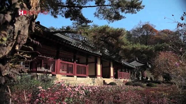 Vẻ đẹp xốn xang của 11 ngôi chùa nổi tiếng nhất xứ Kim Chi - anh 6