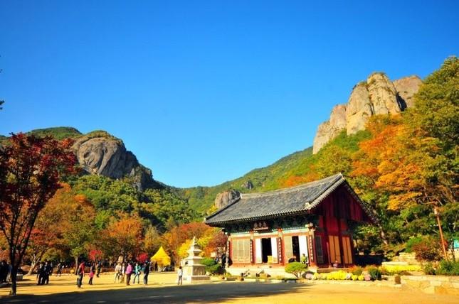 Vẻ đẹp xốn xang của 11 ngôi chùa nổi tiếng nhất xứ Kim Chi - anh 1