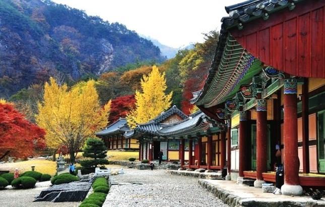 Vẻ đẹp xốn xang của 11 ngôi chùa nổi tiếng nhất xứ Kim Chi - anh 8