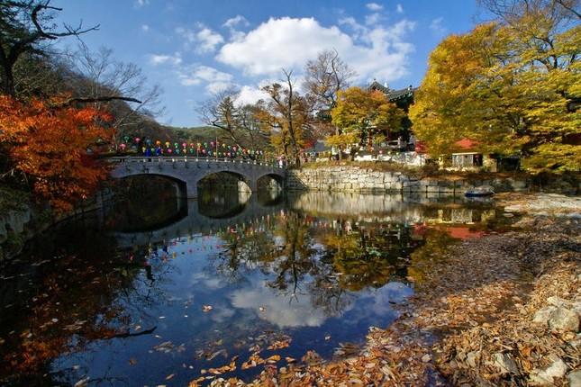 Vẻ đẹp xốn xang của 11 ngôi chùa nổi tiếng nhất xứ Kim Chi - anh 7