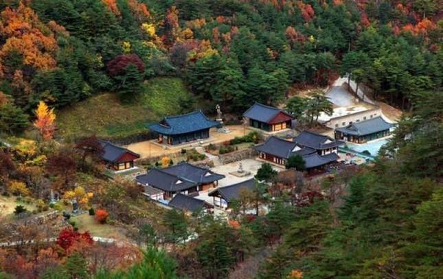 Vẻ đẹp xốn xang của 11 ngôi chùa nổi tiếng nhất xứ Kim Chi - anh 2