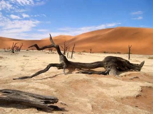 Khám phá 10 vùng đất nóng nhất trên Trái Đất - anh 7
