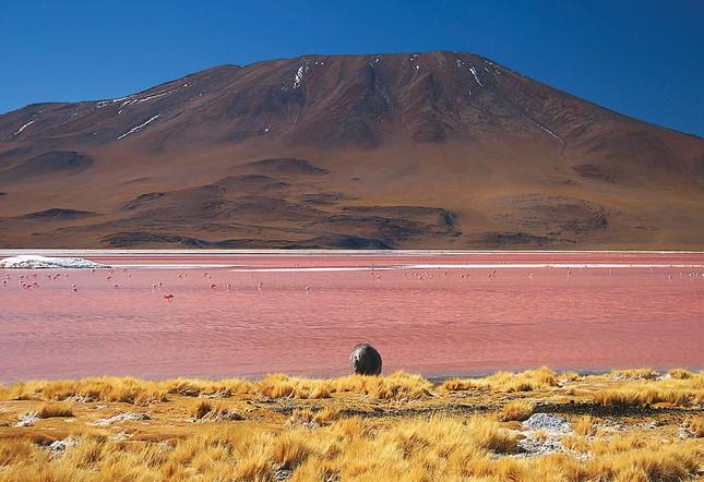 Ngắm 10 hồ nước màu hồng tuyệt đẹp trên thế giới - anh 3
