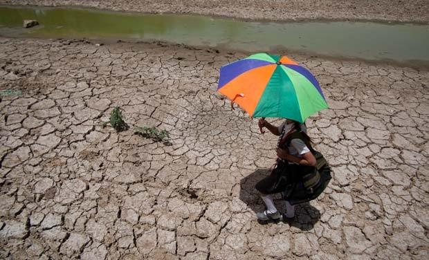 Ấn Độ: Nắng nóng cực độ, hàng chục người chết - anh 1