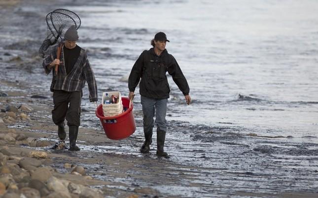 Toàn cảnh vụ tràn 76.000 lít dầu khủng khiếp ở Mỹ [Photos] - anh 9