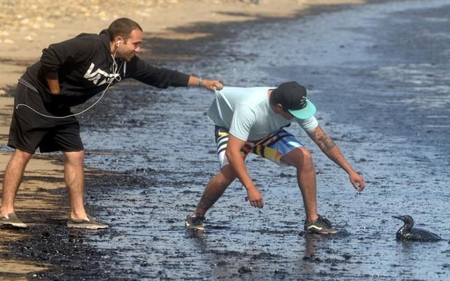 Toàn cảnh vụ tràn 76.000 lít dầu khủng khiếp ở Mỹ [Photos] - anh 8