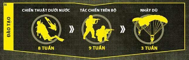Khóa đào tạo 'địa ngục' của biệt kích quân Mỹ Navy SEALs [Infographics] - anh 9