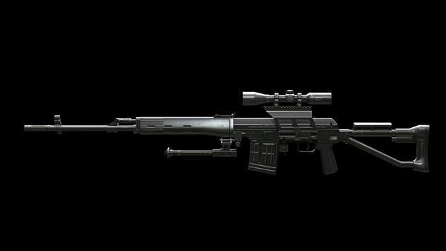 Sức mạnh kinh hoàng của súng bắn tỉa SVDM - anh 1