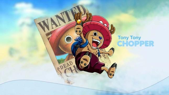 [One Piece] Những hình ảnh đẹp nhất của Tony Tony Chooper - anh 1