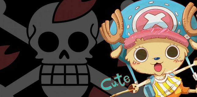 [One Piece] Những hình ảnh đẹp nhất của Tony Tony Chooper - anh 11