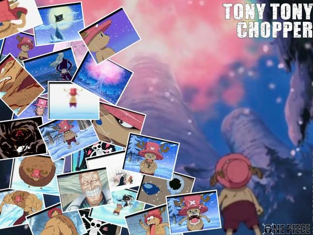 [One Piece] Những hình ảnh đẹp nhất của Tony Tony Chooper - anh 12