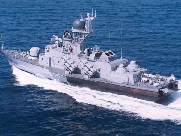'Hải quân Việt Nam như 'Hổ mọc thêm cánh' khi mua tàu của Nga' - anh 1