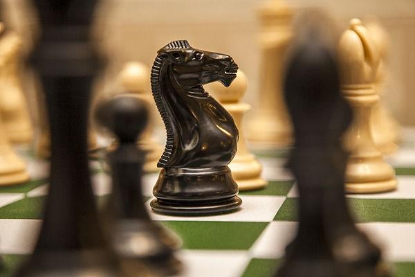 Những khám phá thú vị về Cờ Vua - Trò chơi thúc đẩy trí tuệ nhân loại - anh 4