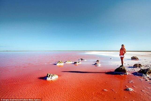 Ngắm hồ nước mặn đẹp tựa trên sao Hỏa ở Ukraine - anh 4