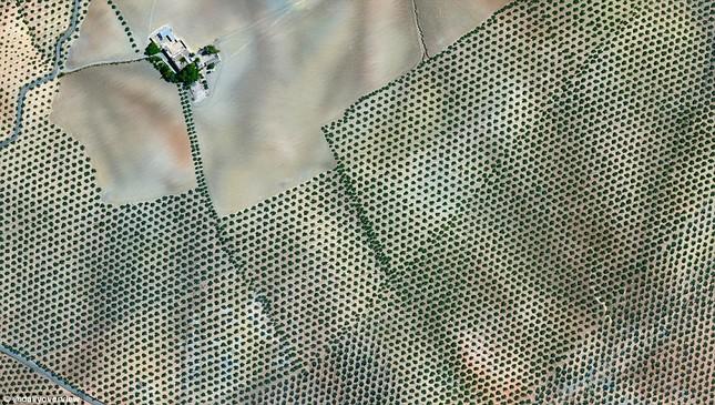 Ngắm những 'kiệt tác tự nhiên' của Trái đất nhìn từ không gian - anh 6