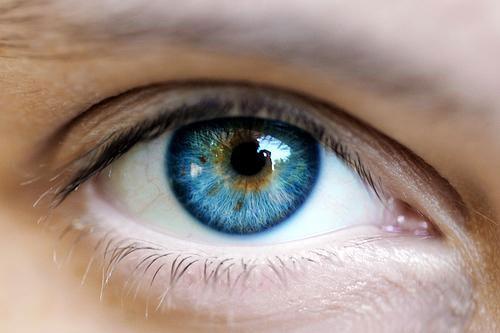 iFact Có thể bạn chưa biết: Những sự thật kinh ngạc về Mắt người - anh 1
