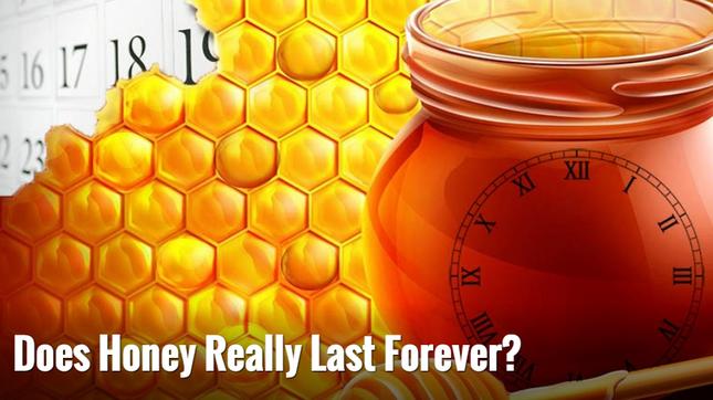 iFact Có thể bạn chưa biết: Mật ong có tuổi thọ trên 3.000 năm - anh 1