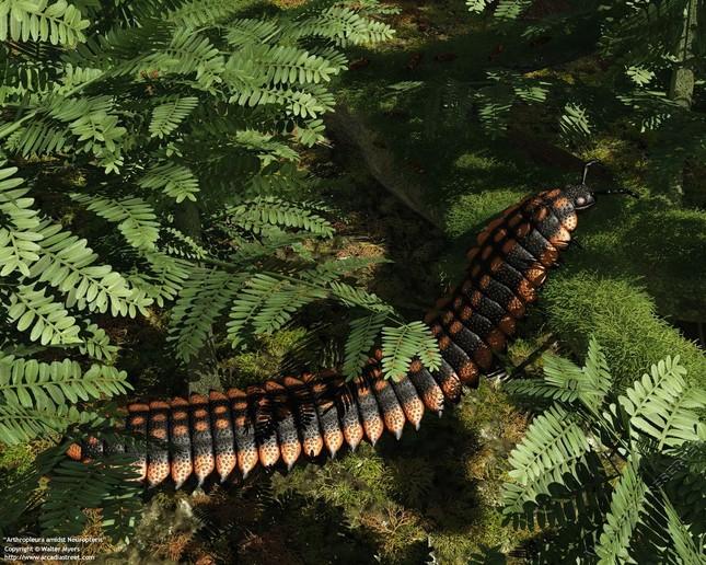 10 quái vật khổng lồ đã tuyệt chủng trên Trái đất - anh 3
