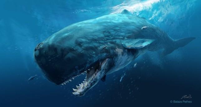 10 quái vật khổng lồ đã tuyệt chủng trên Trái đất - anh 2