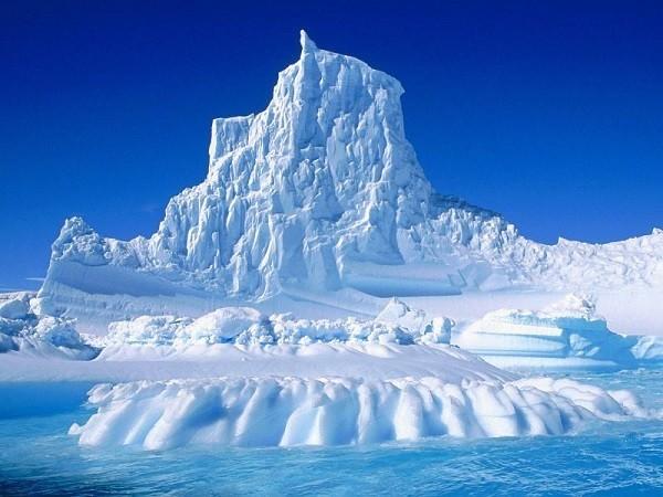 5 cuộc Đại Tuyệt Chủng lớn nhất trên Trái đất - anh 8