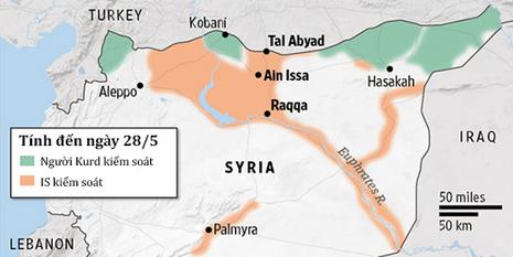 Khủng bố IS bị đánh tan tác tại Raqqa, Syria - anh 2