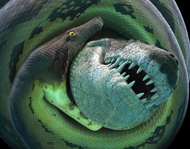 10 quái vật khổng lồ đã tuyệt chủng trên Trái đất - anh 12