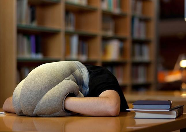 iFact Có thể bạn chưa biết: Tác dụng thần kỳ của giấc ngủ trưa - anh 4