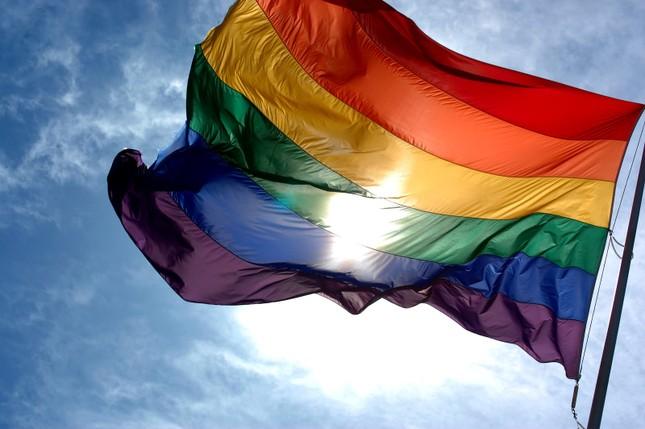 Nguồn gốc và ý nghĩa lá cờ lục sắc LGBT - anh 1