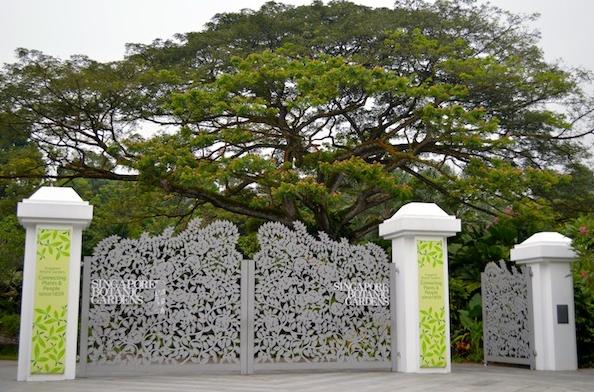 Khám phá vẻ đẹp của Vườn Bách thảo Singapore - Di sản Thế giới mới được UNESCO công nhận - anh 1