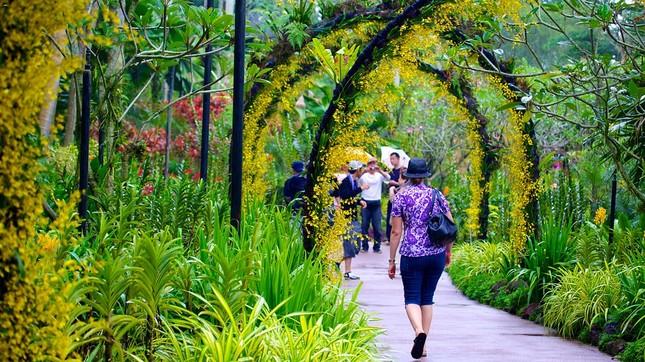 Khám phá vẻ đẹp của Vườn Bách thảo Singapore - Di sản Thế giới mới được UNESCO công nhận - anh 2