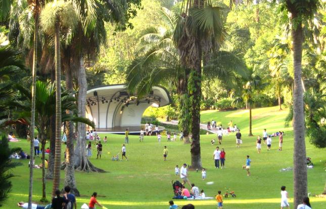 Khám phá vẻ đẹp của Vườn Bách thảo Singapore - Di sản Thế giới mới được UNESCO công nhận - anh 7
