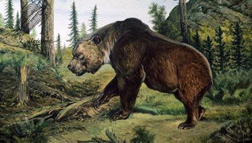10 động vật tuyệt chủng thời cổ đại có hi vọng sống lại - anh 6