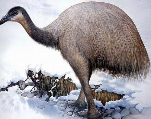 10 động vật tuyệt chủng thời cổ đại có hi vọng sống lại - anh 8