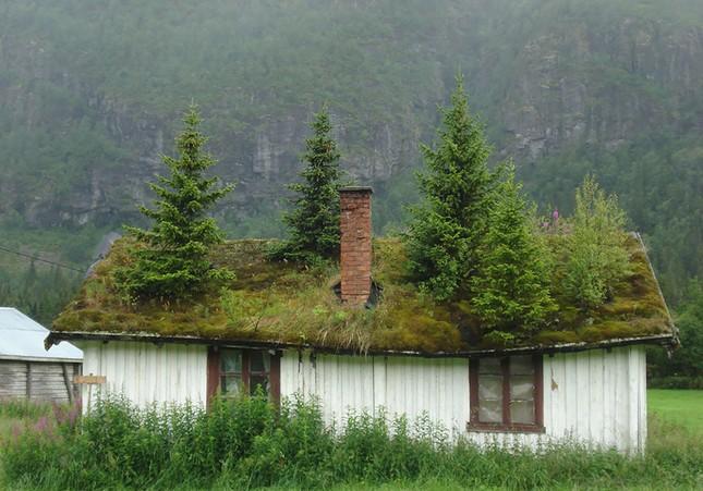 Ngắm 16 kiệt tác kiến trúc đẹp tựa cổ tích ở Na Uy - anh 12