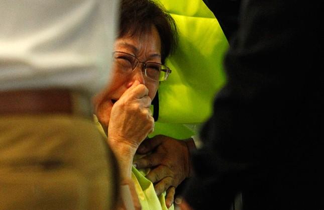 Thảm kịch máy bay MH17: Những dấu mốc sau một năm kinh hoàng - anh 1
