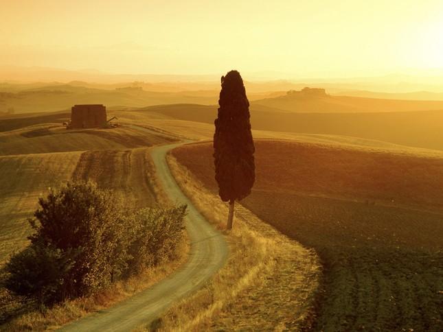 Tuscany - Vùng đất quyến rũ bậc nhất nước Ý [Photos] - anh 2