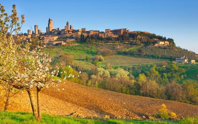 Tuscany - Vùng đất quyến rũ bậc nhất nước Ý [Photos] - anh 3