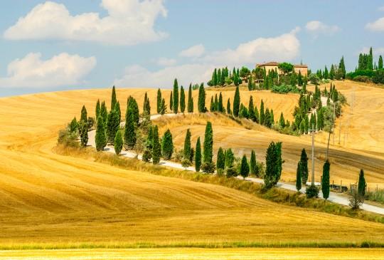 Tuscany - Vùng đất quyến rũ bậc nhất nước Ý [Photos] - anh 13